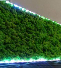 ATA Moss Design
